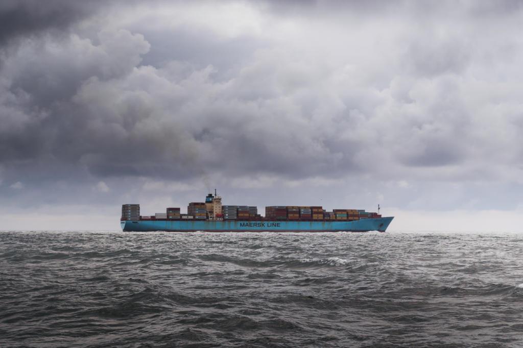 Ocean Freight Cargo Ship